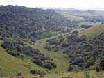 View down into Longcombe Bottom