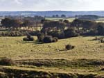 Badbury Rings View