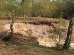 Quarry on Gorley Common