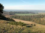 View from Beacon Hill near Farley Mount