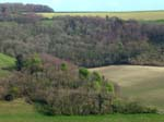 Across Longcombe Bottom