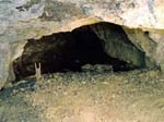 A Pit in the Tar Tunnel