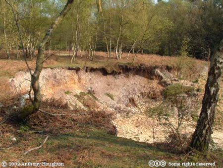 Gorley Common,Quarry