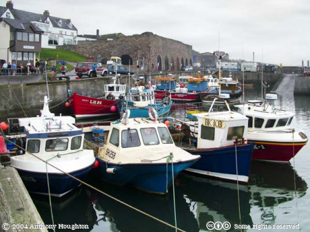 Seahouses Harbour,Fishes,Fishing Boats