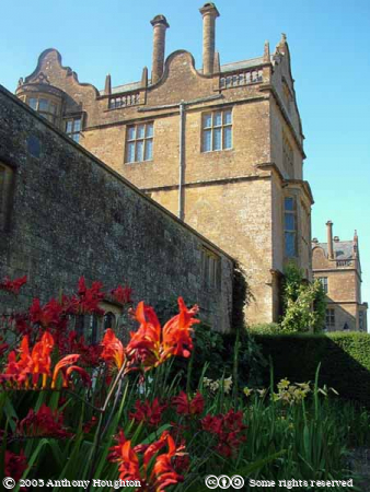 Montacute House,Stately Home,Flowers