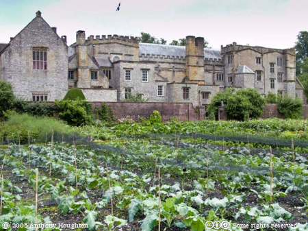 Forde Abbey,Stately Home,House,Kitchen Garden