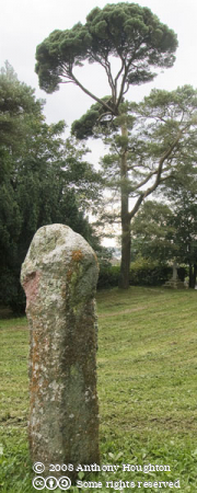 Medieval Cross,Berry Tower,Bodmin