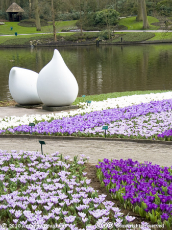 Keukenhof,Flowers,Sculpture