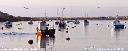 Fishing Boats,Christchurch Harbour