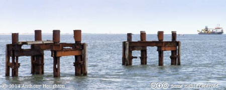 Pier Dolphins,Lepe,Stansore Point