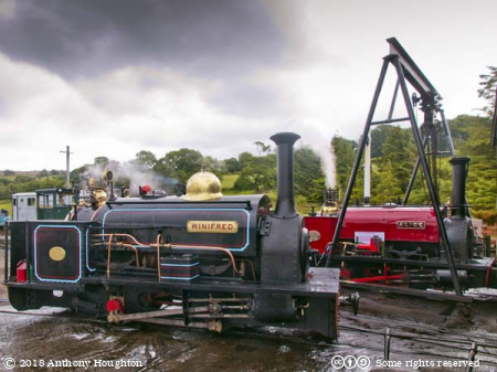 Winifred,Alice,Steam Engines,Bala Lake Railway
