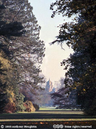 Westonbirt,Trees,House