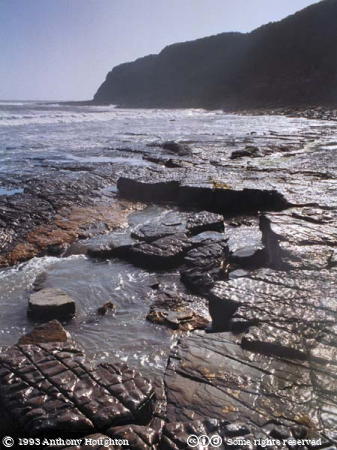 Kimmeridge,Beach,Rocks,Ledges