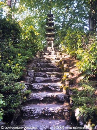 Poole,Compton Acres Gardens,Japanese,Steps