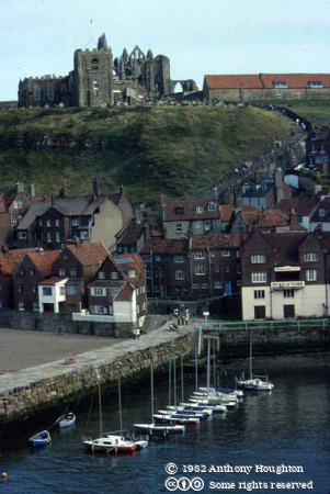 Whitby Harbour,Buildings